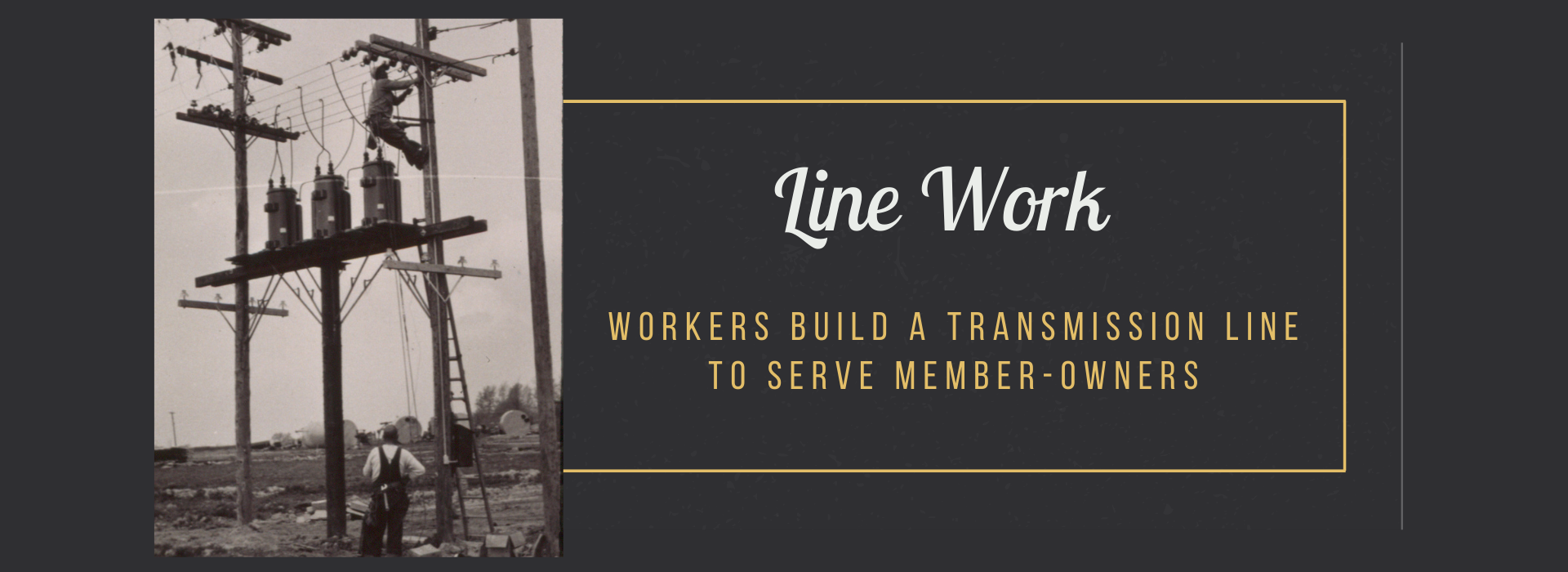 workers build a transmission line to serve member-owners